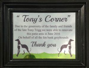 tonys corner 1