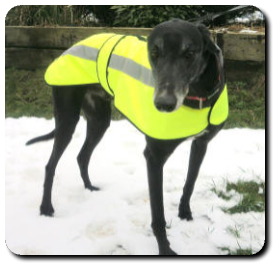 Hi-vis thermal jacket