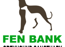 Fen Bank Greyhounds Logo